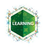 Learning floral plants pattern green hexagon button vector illustration