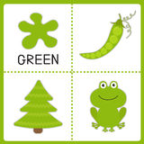 Learning  green color. Frog, green pea and fir tree. Educational Stock Photos