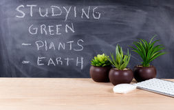 Learning about green topics in classroom environment with blackb Stock Images