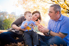 Learning About Nature. A young boy explores the world around him with his parents Stock Images