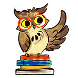 Learning owl with books Royalty Free Stock Photos