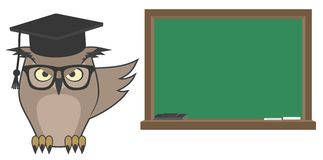 Learning owl Stock Images
