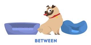 Learning preposition concept illustration. The pug animal