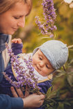 Learning the scent of flowers Royalty Free Stock Photo