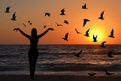 Learning to fly abstract concept. With silhouettes of woman and birds at sunrise Stock Image