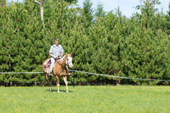 Learning to ride a horse. Active man learning to ride a horse Stock Image