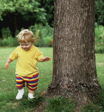 Learning to Walk. A toddler boy practicing his walk near a tree, in a park Stock Image