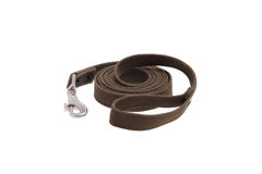 Leash dog rolled. Isolated on white Royalty Free Stock Image