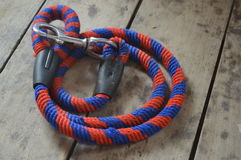 A leash Royalty Free Stock Photography