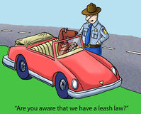 Leash law in this state vector illustration
