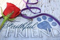 Memorial of a beloved pet Royalty Free Stock Image
