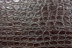 Leather. Brown leather an  crocodile effect Royalty Free Stock Images