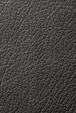 Leather Stock Photos