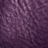 Leather. Royalty Free Stock Image