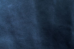 Leather. Texture in a daylight. Texture series Royalty Free Stock Images