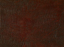 Leather. Brown. Texture of the skin. The folds of the skin Stock Photography