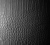 Leather Stock Photography