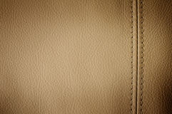 Free Leather Royalty Free Stock Photos - 14534428