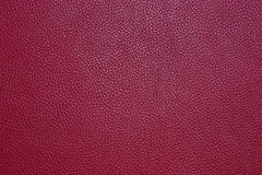 Leather. Natural qualitative red leather texture Stock Image