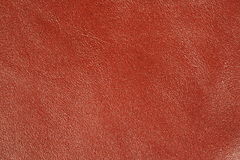 Leather 3. Peace of red leather closeup shot Stock Image