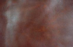 Leather2 免版税图库摄影
