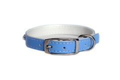 Leather animal collar isolated Royalty Free Stock Image