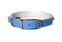 Leather animal collar isolated Royalty Free Stock Photo
