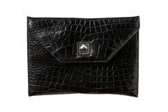 Leather, back alligator  bag Stock Photos