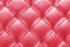 Leather background with stitching Royalty Free Stock Image