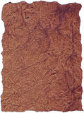 Leather background texture. With edges burned away, good alpha channel Royalty Free Stock Image