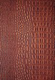 Leather backgrounds Stock Photos