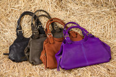 Leather bag in the hay Stock Photos