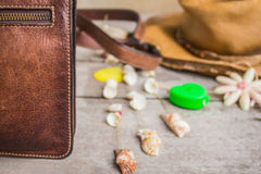 Leather bag Stock Images