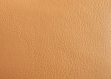 Leather beige background highly detailed Stock Image
