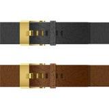 Leather belt Stock Image