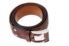 Crocodile leather belt  Stock Photos