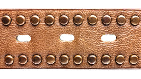 Leather belt with metallic accessories and holes Royalty Free Stock Photography