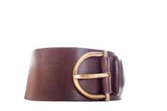 Leather belt  on white background. Stock Image