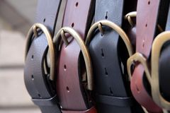 Free Leather Belts Royalty Free Stock Photos - 14785958
