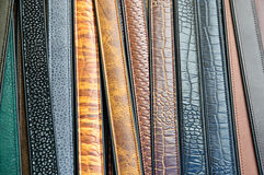 Leather belts Royalty Free Stock Photo