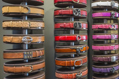 Leather Belts Royalty Free Stock Photography
