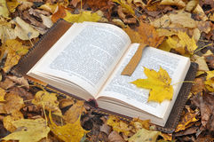 Leather book cover in fallen leaves Royalty Free Stock Image
