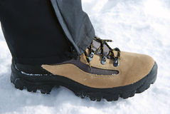 Leather boot. With black laces on snow Royalty Free Stock Photos