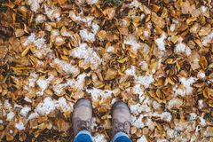 Leather Boots legs View on the Snow with Fallen leaves at autumn fall winter season. Fashion and seasonal concept Royalty Free Stock Photo