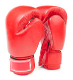 Leather boxing gloves isolated Royalty Free Stock Photography
