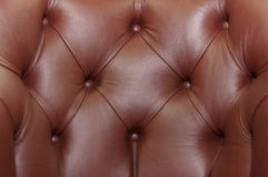 Leather with buttons Stock Image