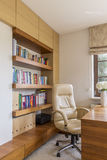 Leather chair and bookcase Stock Images