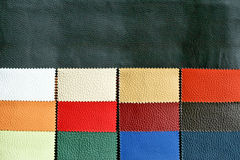 Leather chart 3 Royalty Free Stock Image