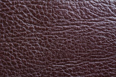 Leather. Royalty Free Stock Photo