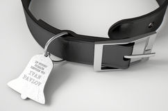Leather Collar With Tag. A concept depicting pavlovian conditioning theory of a leather dog collar and a bell shaped identification tag showing ownership to ivan Stock Photo